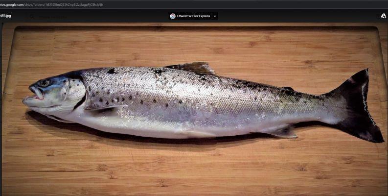 Ryby i Grzyby