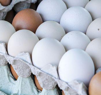 Jaja wiejskie